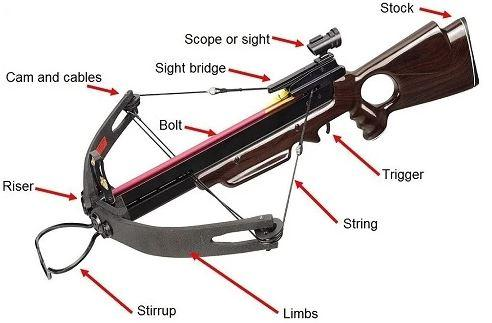 parts of crossbow